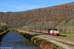 Un petit train