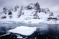 Penguins on ice in the Lemaire Channel, Antarctic Peninsula