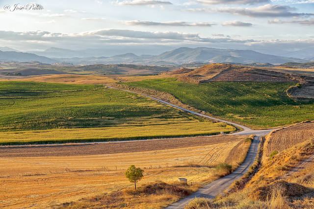 En Artajona (Navarra)
