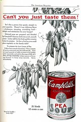 Campbell's Soup 1924