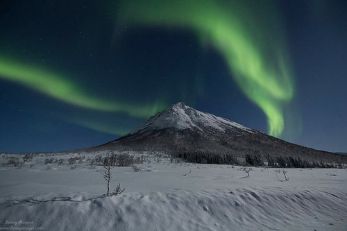Hunting Northern Lights Above the Arctic Circle: Local Experts Guide You There