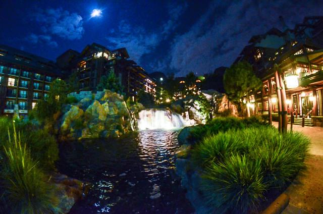 Wilderness Lodge night