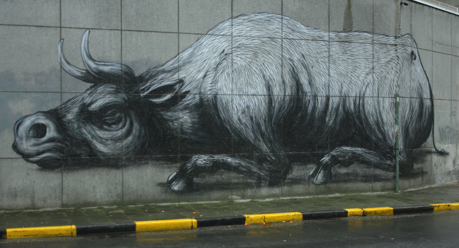 Streetart in Gent, België - ROA | Mooistestedentrips.nl