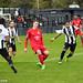 Tooting & Mitcham United 5 Harrow Borough 2