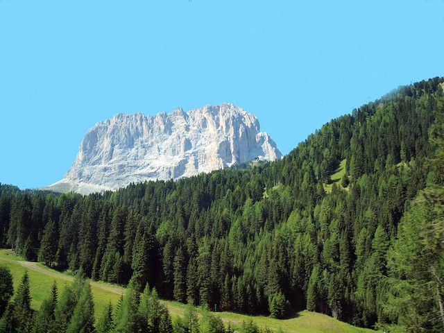 Dolomite Mountain and Trees 056