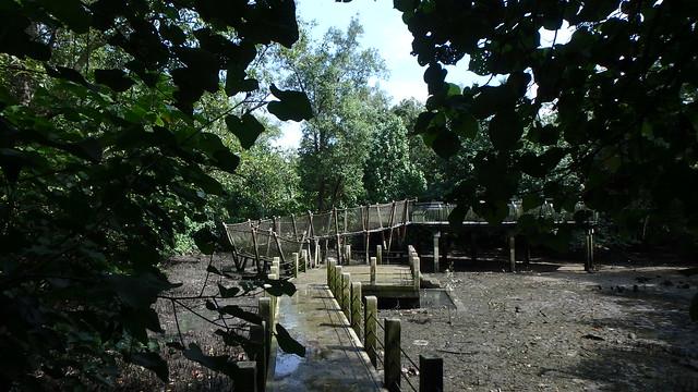 Sungei Buloh Wetland Reserve: Mud Experience