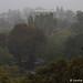 Windsor - Fog Valley