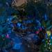Pandorian stream by fractal pics