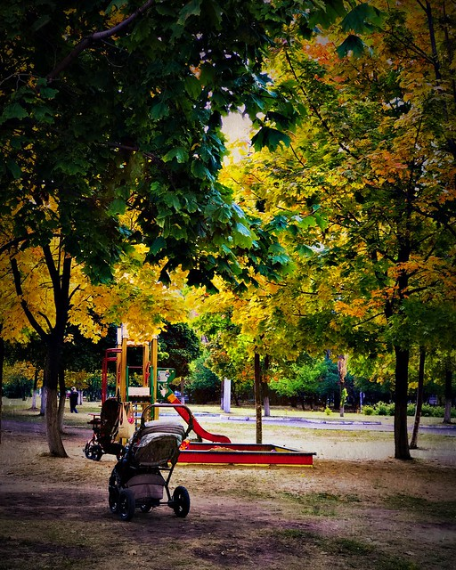 •Baby carriage in autumn park 🍂✨🌲✨