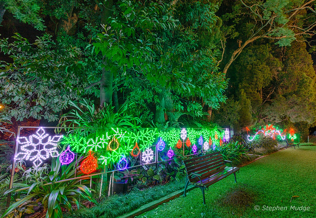 Christmas lights at Government House