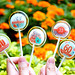 客製結婚紀念日&生日大壽伴手禮-精緻的水晶棒棒糖讓你吃甜甜