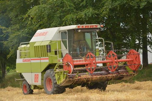 Claas Dominator 88 Classic Combine Harvester cutting Winter Barley