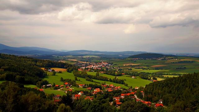 Blick auf Mais im Bayerischen Wald
