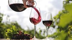 Новороссийск приглашает на Первый праздник молодого вина «Божоле Нуво»