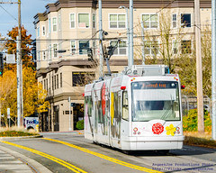 International District Streetcar Against the Fall Foilage