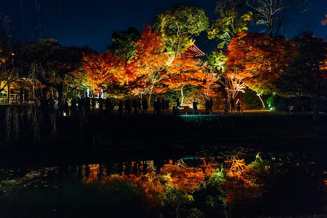 Kyoto_Byodoin_17