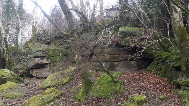 Badger's Holt Lower Outcrop