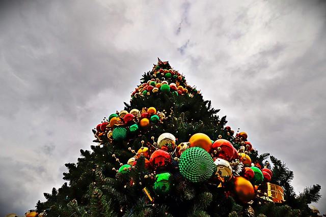 """Christmas Tree at Fountain Park"""