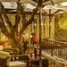 Hotel 5 étoiles le Mas Candille à Mougins