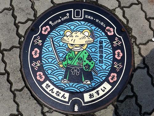 Sennan Osaka, manhole cover 2 (大阪府泉南市のマンホール2)