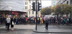 Anti Mugabe demonstration outside Zimbabwe House, Strand, London yesterday