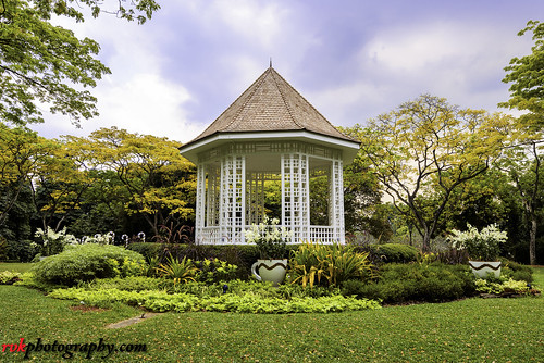 2016 botanicgardens december december2016 greenery landscape nature nikkor1424mm nikon nikond810 rvk rvkphotography raghukumar raghukumarphotography singapore wideangle wideangleimages rvkonlinecom rvkphotographycom sg