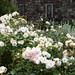 Parham House & Gardens - West Sussex