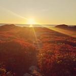 Wschód słońca na Duncan Cove