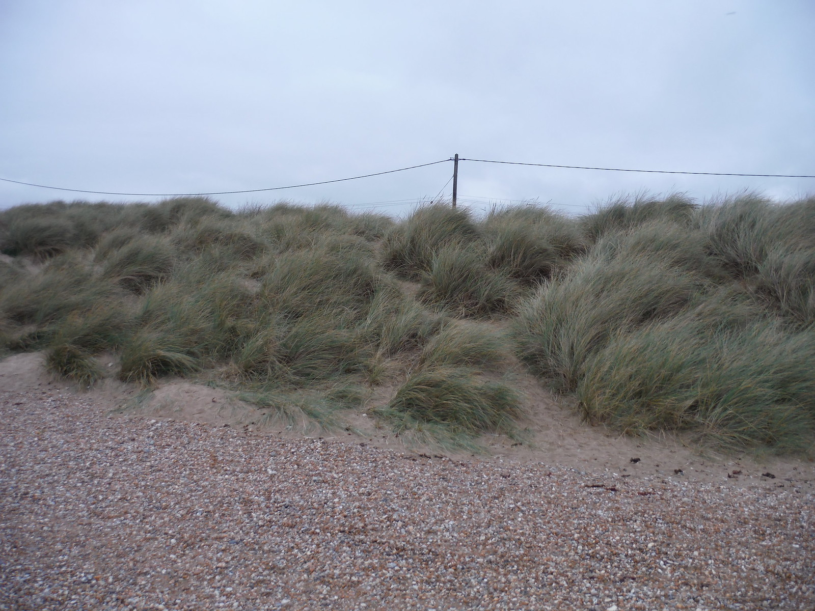 Sand Dunes in Camber SWC 154 - Rye to Dungeness and Lydd-on-Sea or Lydd or Circular