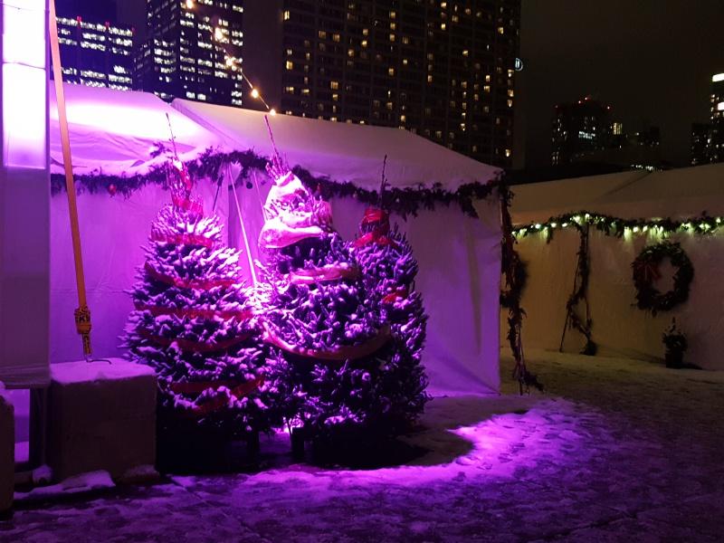 Toronto Christmas Market City Hall