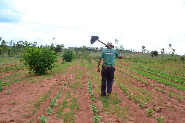 Cortes nos programas sociais do campo afetam a vida dos trabalhadores rurais