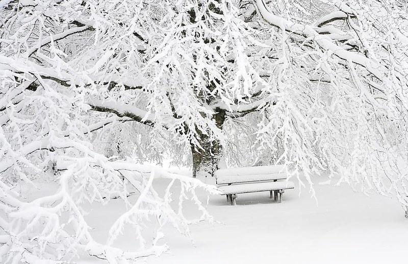 Talvi 03