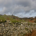 Over drystone wall