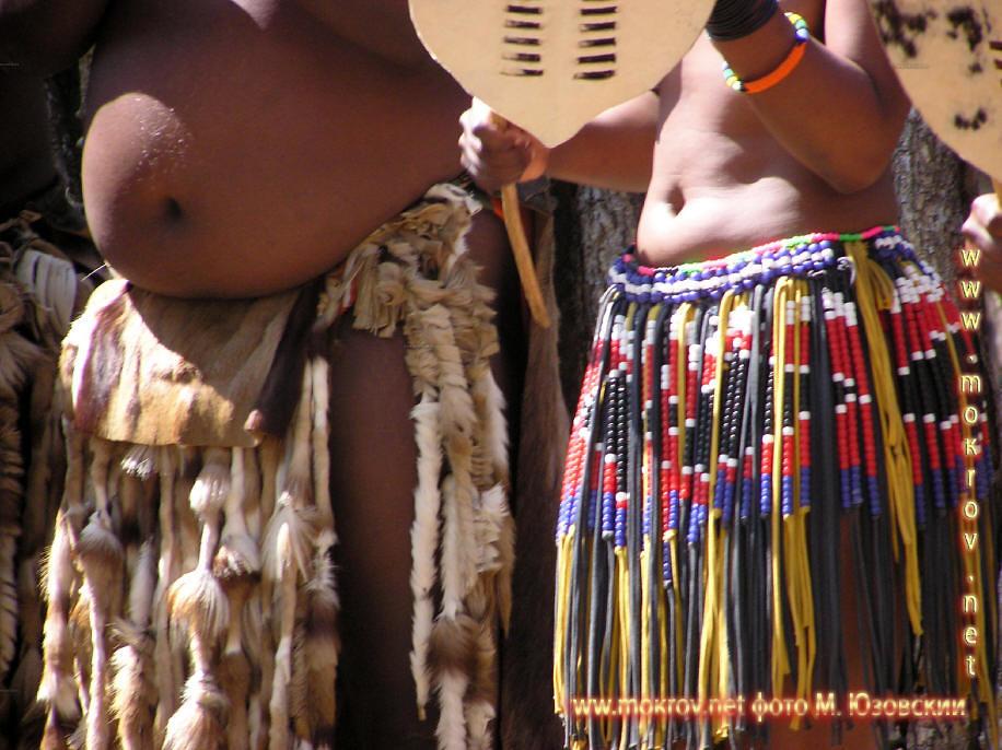 Национальный Парк Крюгера ЮАР  (11)
