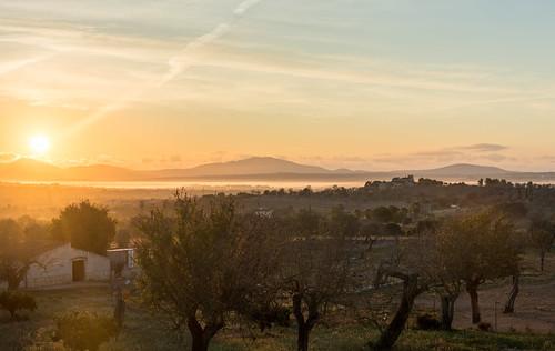 Misty Sunrise on Mallorca