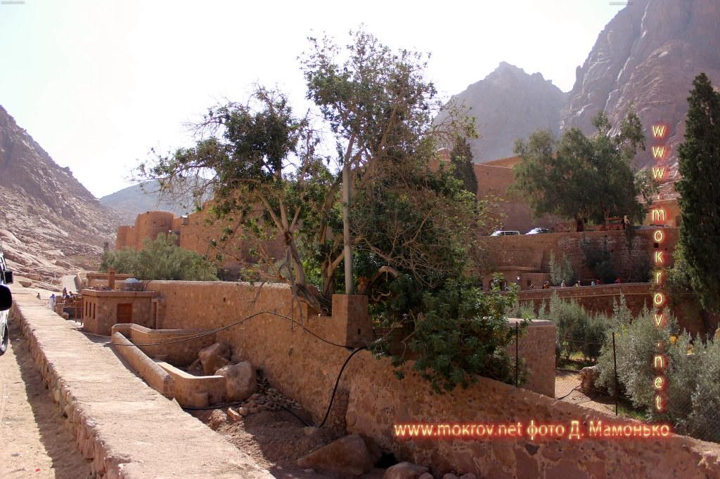 Синайские горы активный отдых с фотокамерой