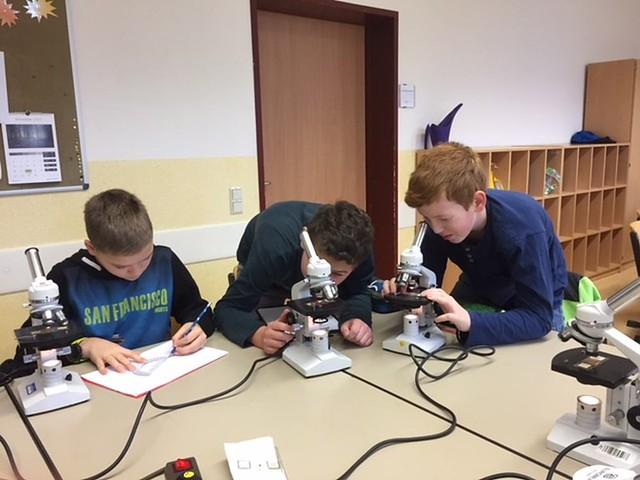 2017-11-20-Tag der Naturwissenschaften