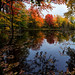 panorama - rural Maine - 10-12-15  01 by Tucapel