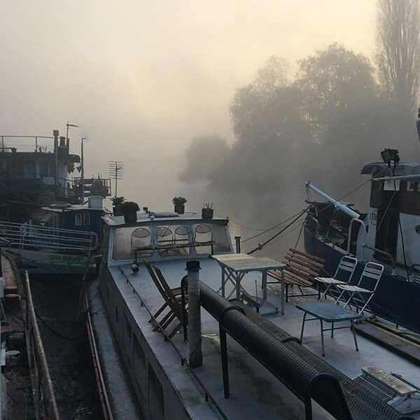Thames mornings