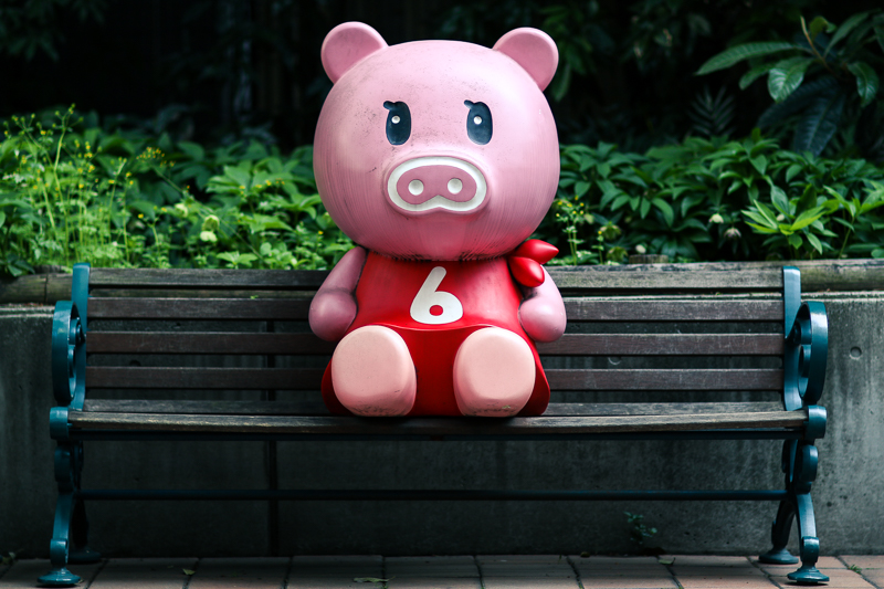 Piggy on park bench