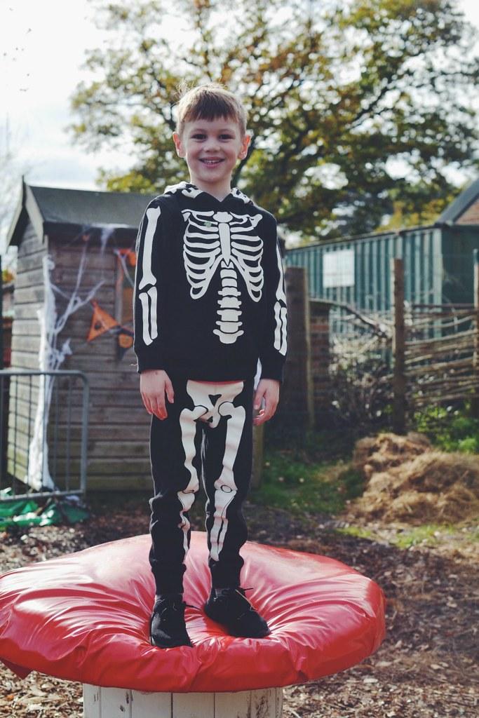 Halloween M on a Mushroom