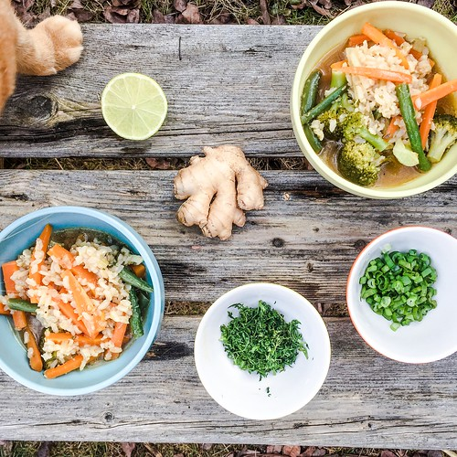 årstiderna organic vegan food box, march - april 2017 -