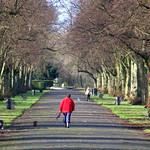 At Halsam Park