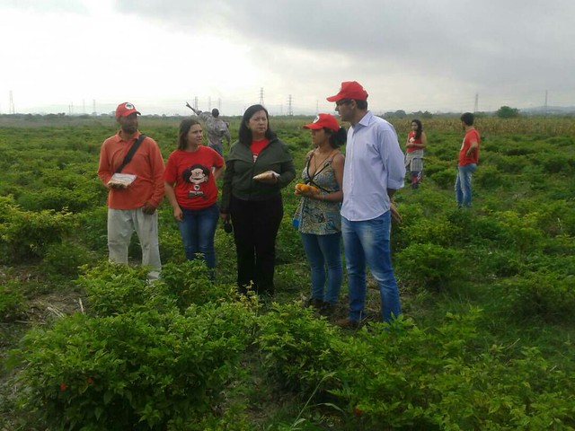 Brigada do MST na Venezuela completa 12 anos com formação e produção agroecológica