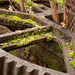 TIMS Mill Tour 2017 UK - Churchill Forge - moss-covered disused equipment-0704