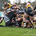 The Otley forwards win a penalty try at the death-1118