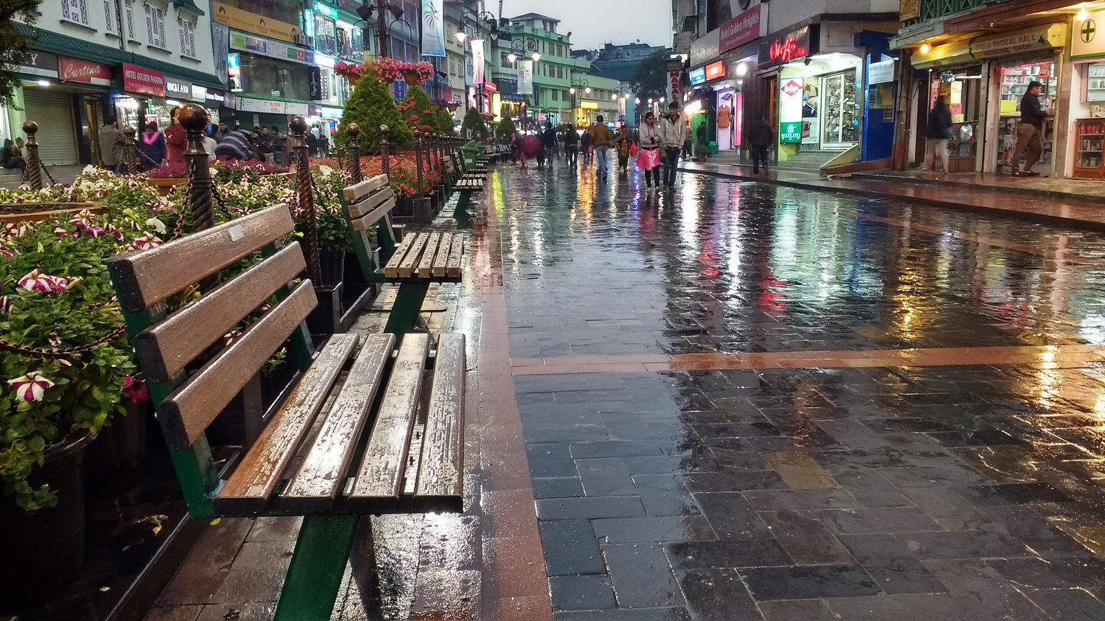 Benches in the rain