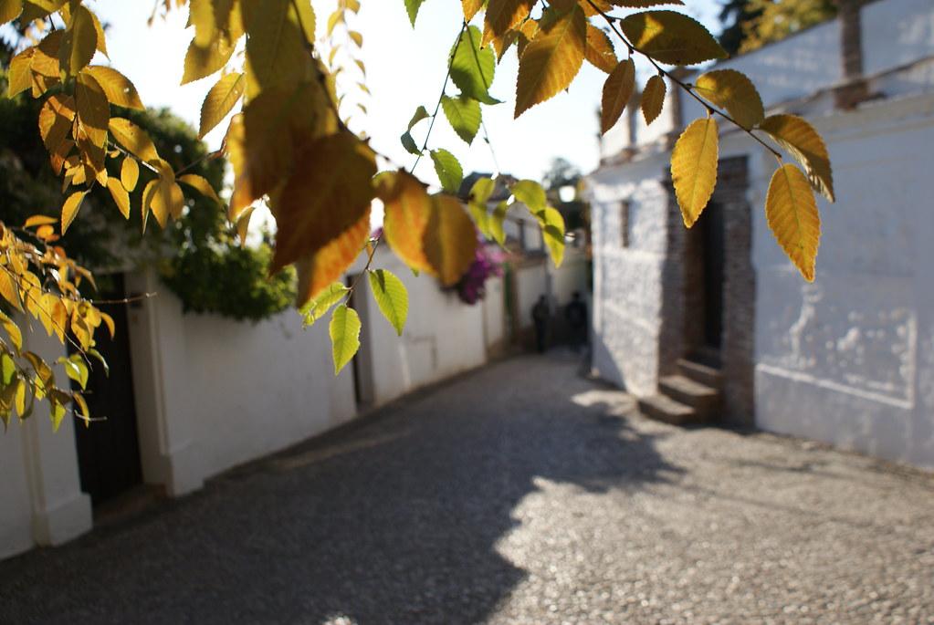 Dans une ruelle de la ville blanche de Grenade, Albaicín ou Albayzín l'ancienne médina.
