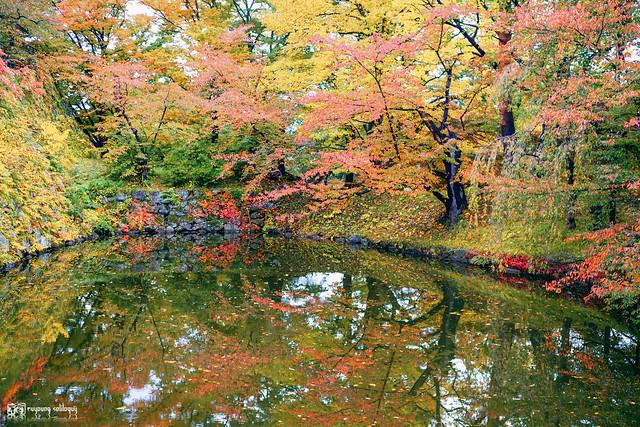秋色是山巒中的一抹紅 | 20