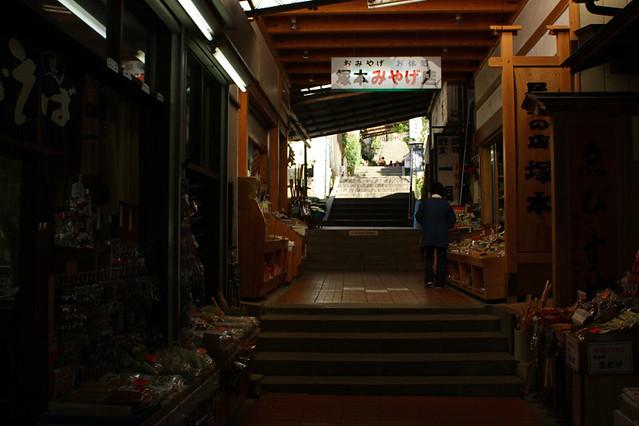 20110417_大山_0004